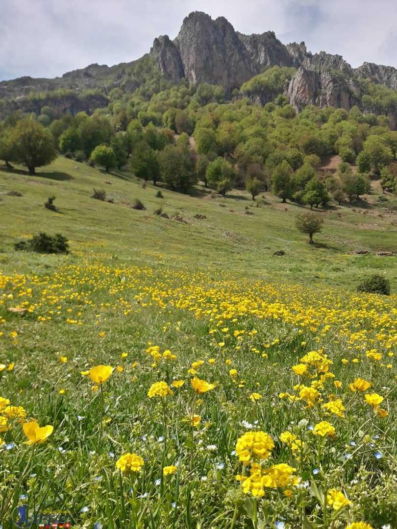 کوه روبار – ماسوله