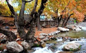 روستای مال آقا باغ ملک