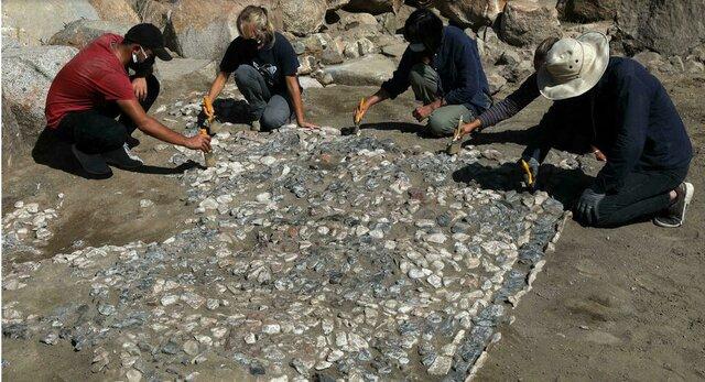 کشف جد سنگفرشهای مدیترانهای در ترکیه